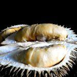 Durian Ohhh Durian – Sana sini Crepe Durian… Sedap sangat ke Crepe Durian ??