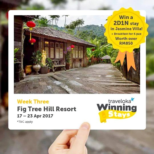 Traveloka Winning A Stays Contest
