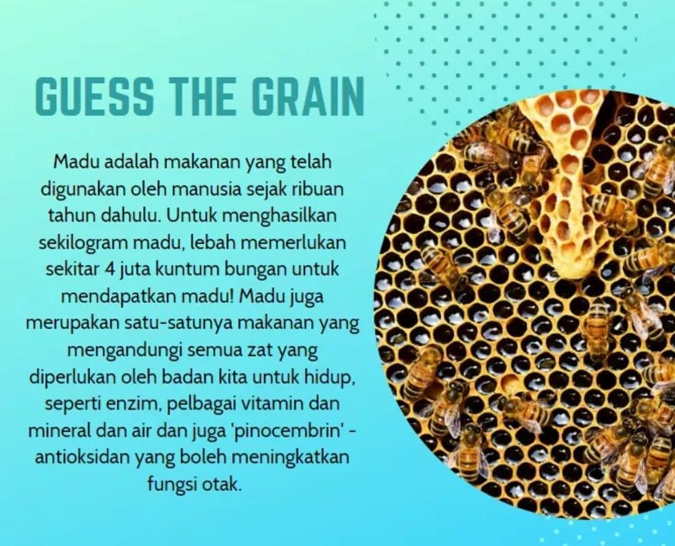 Surya S Great Grain Bijirin Sarapan Ringkas Mudah Sedap