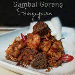 Menu Raya Sambal Goreng Singapore Sedap Mudah